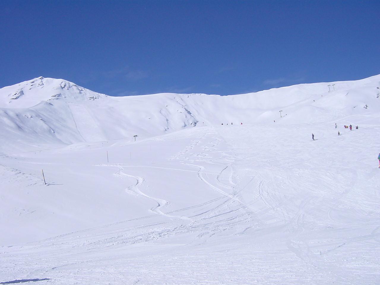 Sorboit Winter 01