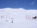 Sorboit Winter 2001